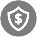 gray-health-budget-icon